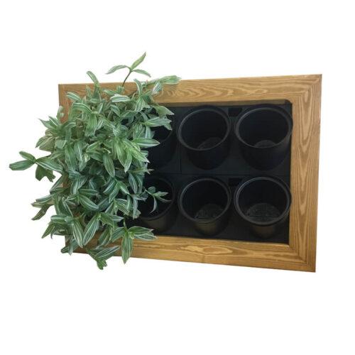 Taimeseina alus Natural8-le taimele